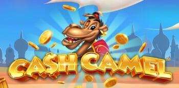 Bild Cash Camel Logo