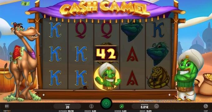 Bild Cash Camel spielautomat