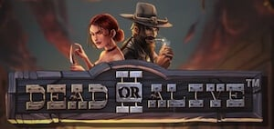 Bild Dead or Alive 2 slot
